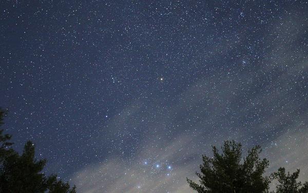 night-sky-star-wood-space-starry-blue